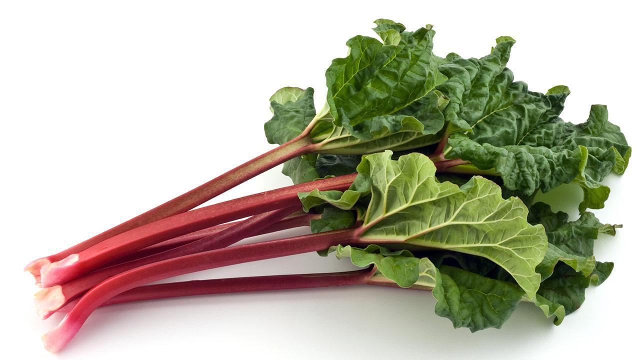 Delicious rhubarb recipes - fresh rhubarb