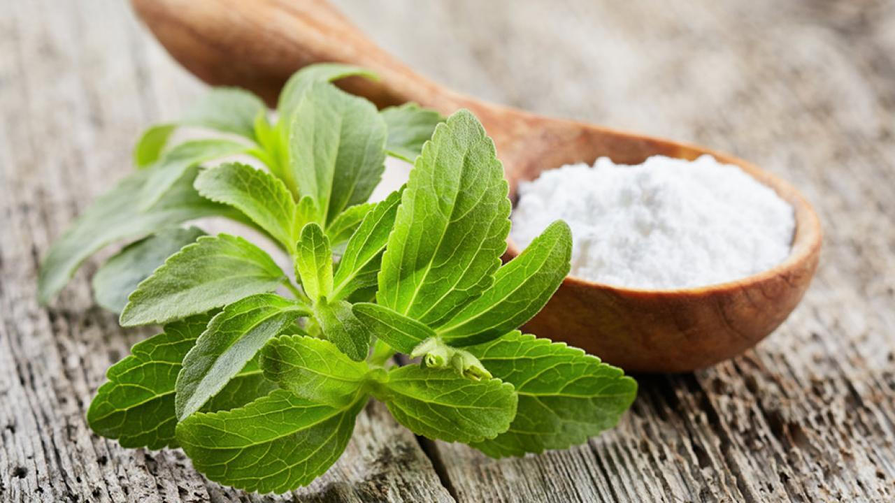 Sugar - What alternatives are there? / Stevia