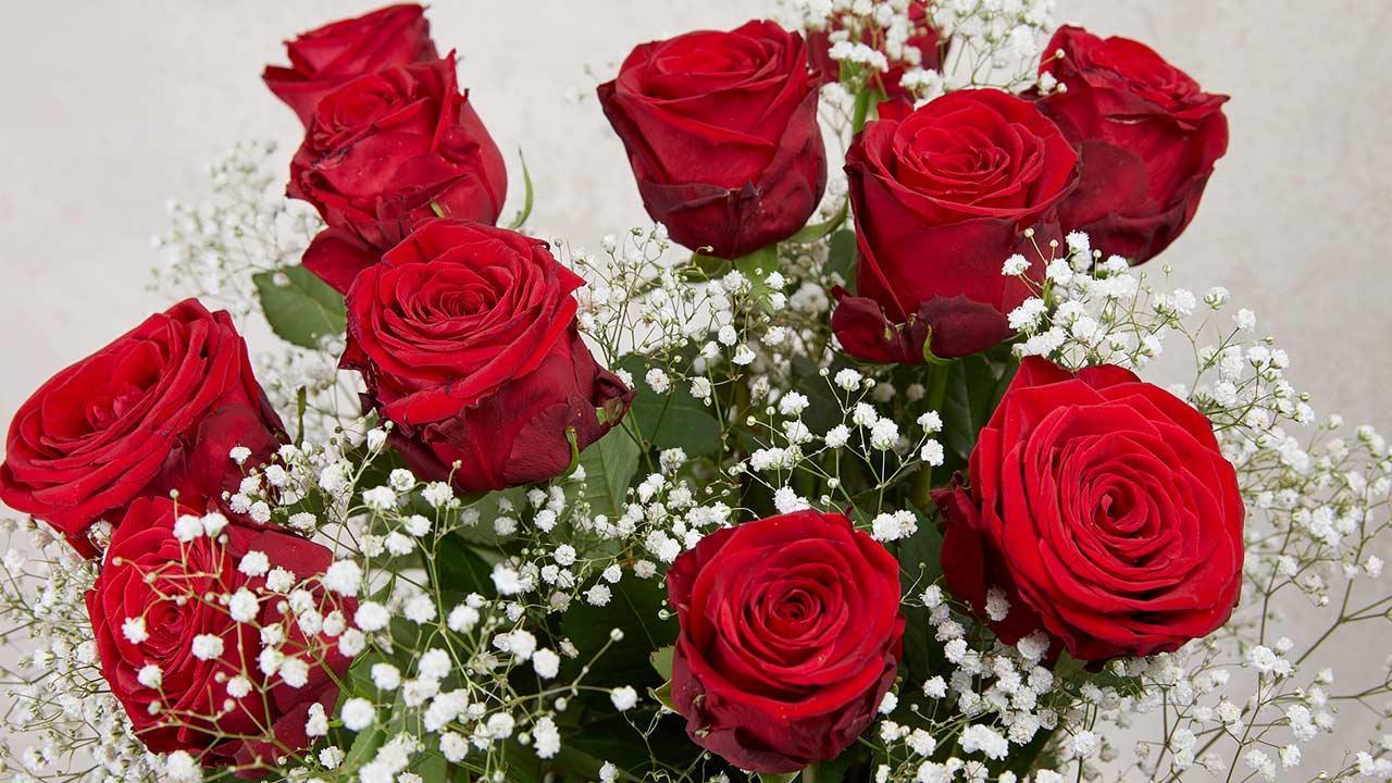 How her Valentine's Day roses stay fresh longer / fresh red roses