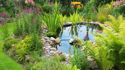 Create waters in your own garden