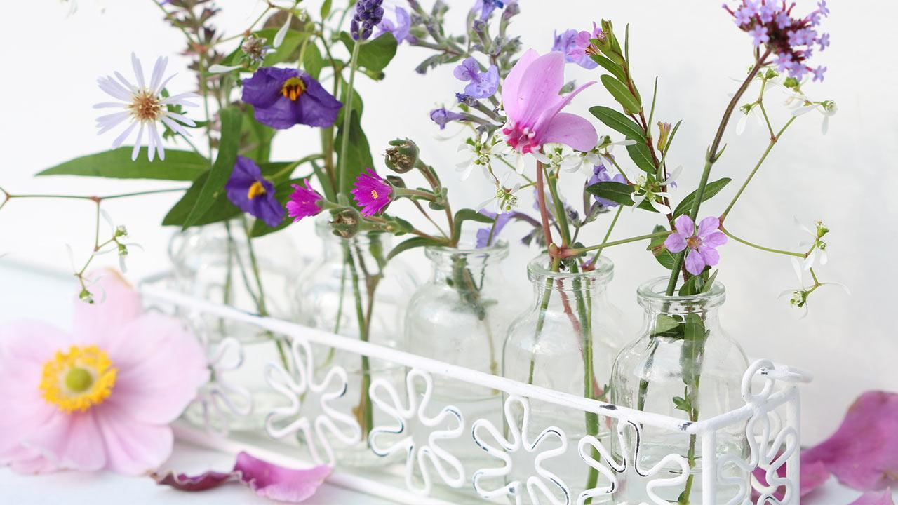 Summer decoration ideas for home / cut flowers in small glass bottles