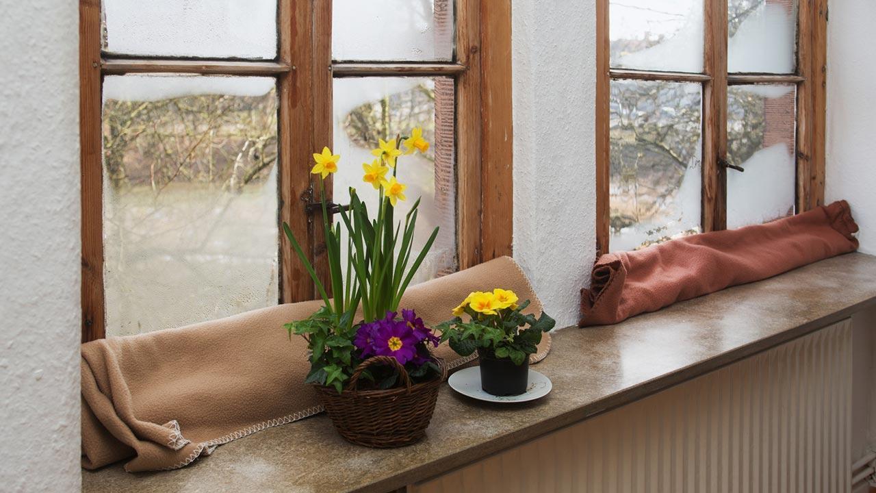 Fenster und Türen gegen Zugluft abdichten - Zugluftstopper