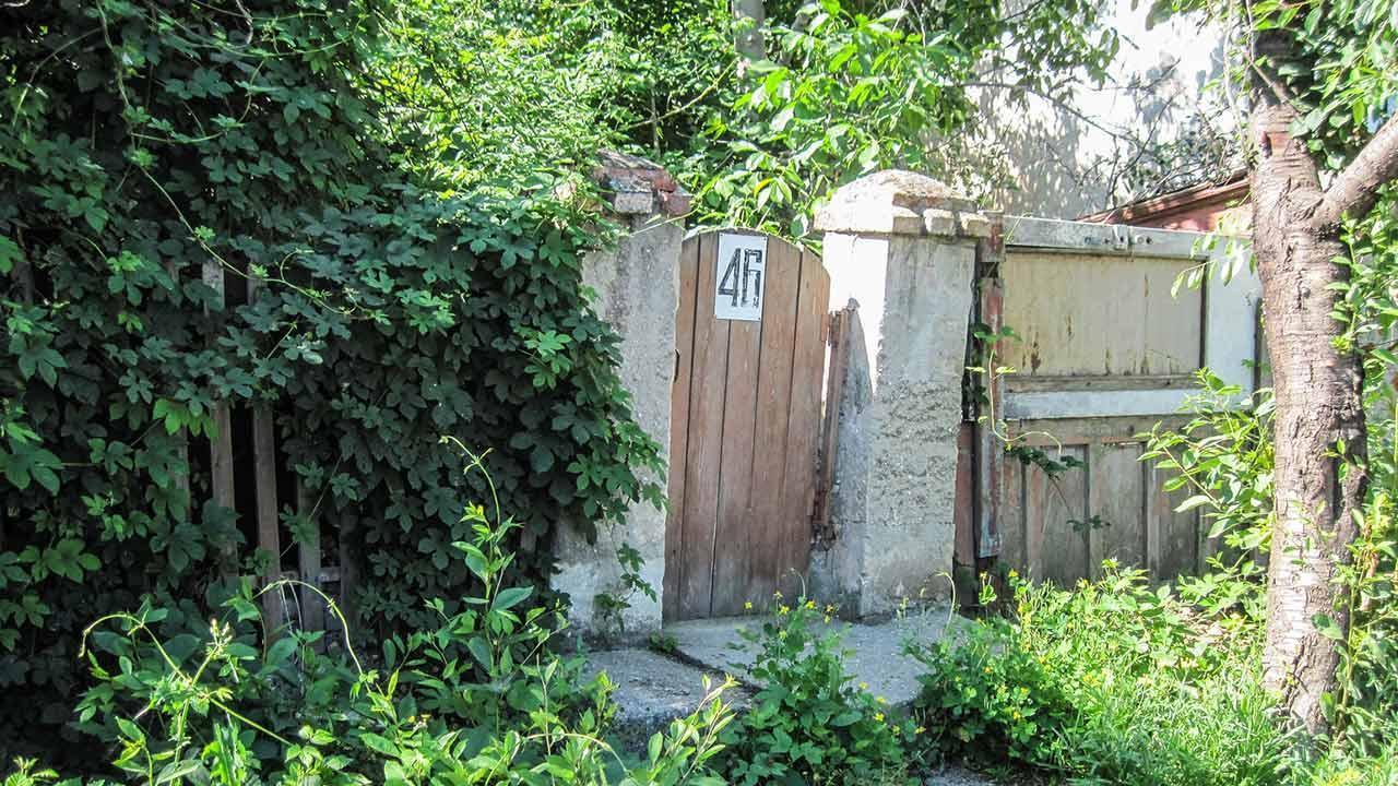 Natural visual protection through ivy - Garden entrance
