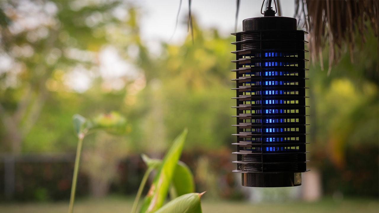 Effective insect protection in house and apartment - electric insect screen
