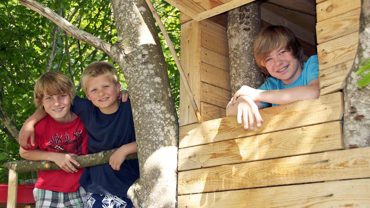 Tree house - From a child's dream to a bedroom in the trees