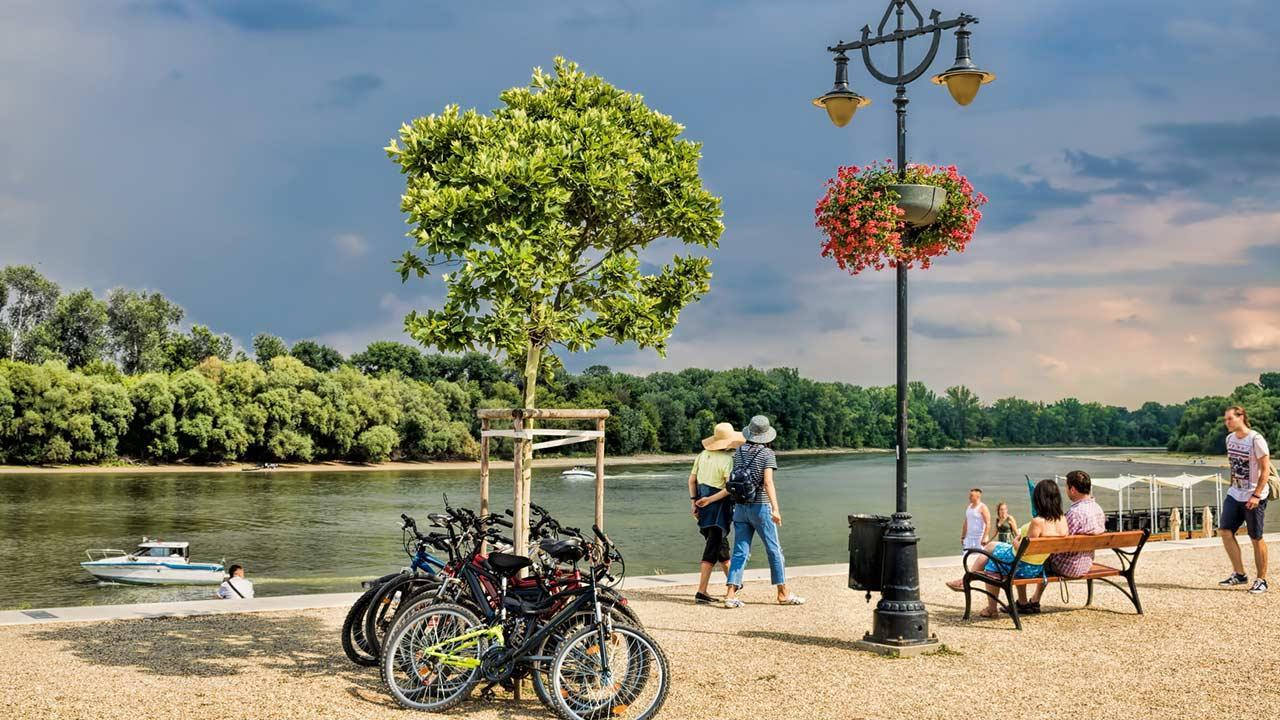 Cycling tour along the Danube - Danube bank in Hungary
