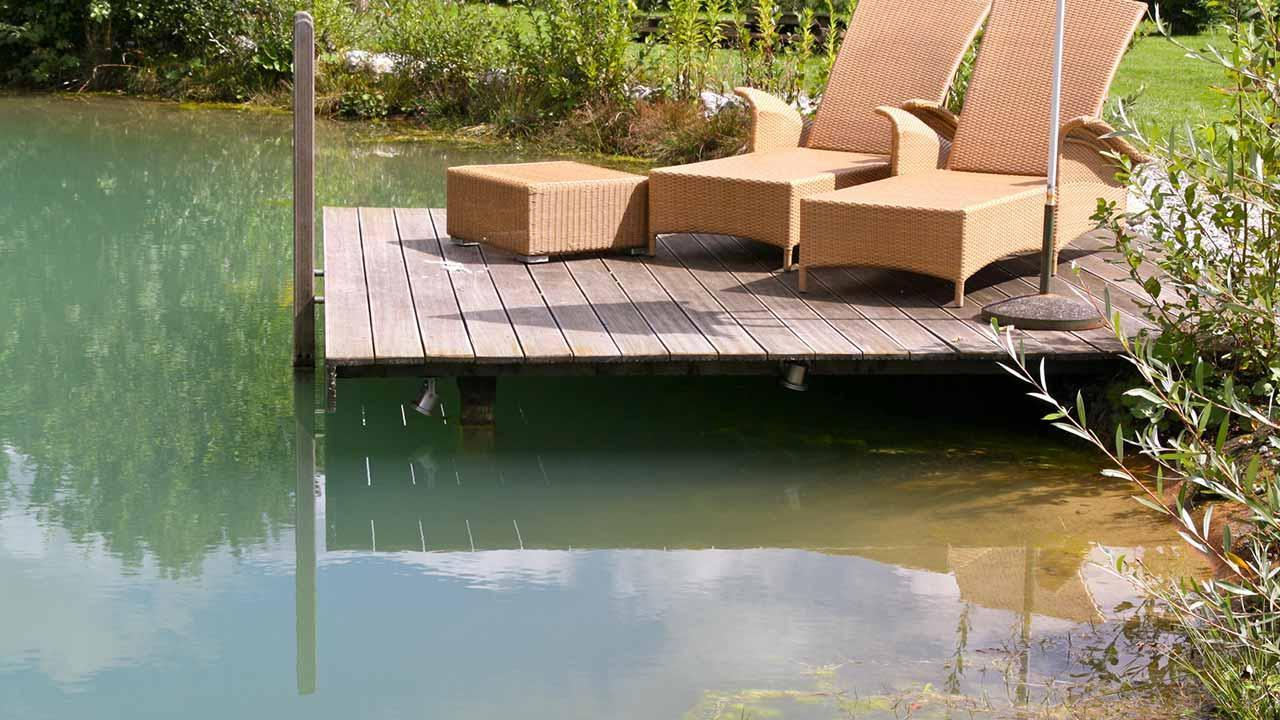 Swimming pond instead of swimming pool - Swimming pond with wooden jetty