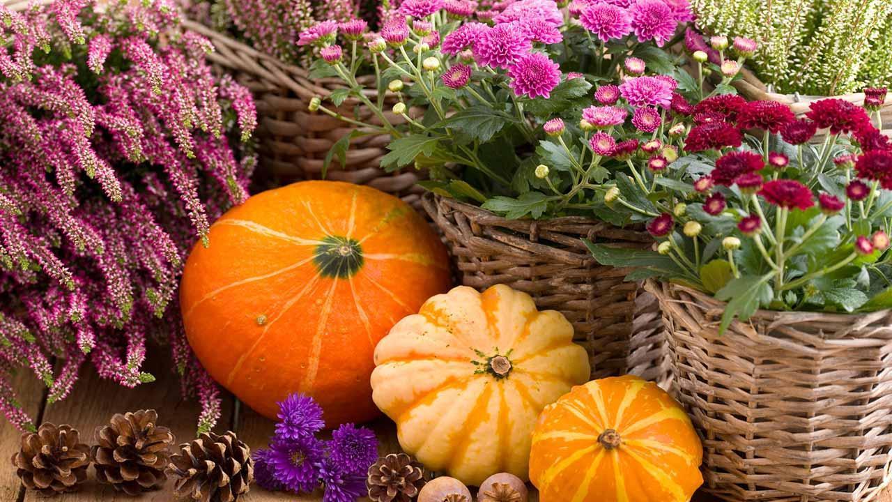 The most beautiful decoration ideas for your garden in autumn - Herbstliche Deko