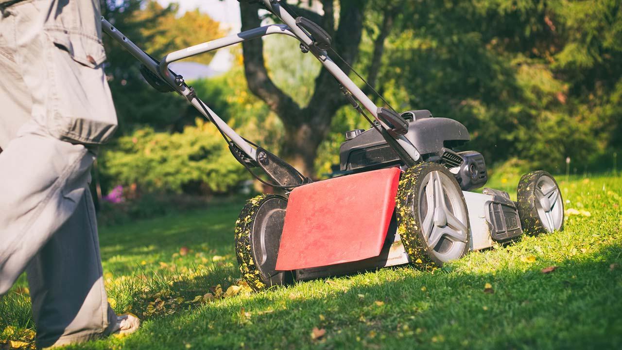 Garden work in autumn - lawn mowing