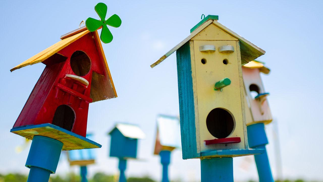 Building a bird house for the winter - colorful models
