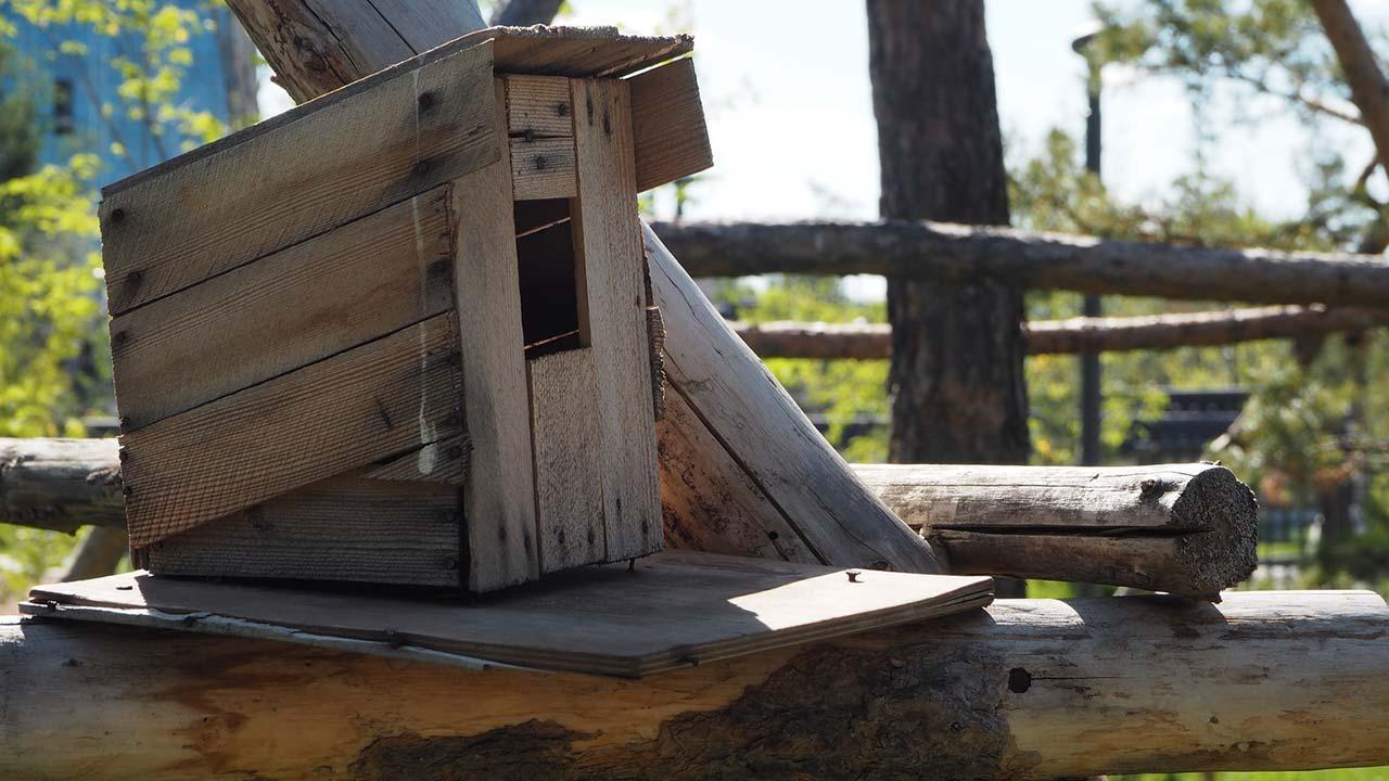 Building a bird house for the winter by yourself - simple model
